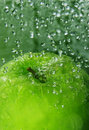 Apple splash Royalty Free Stock Images