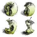 Apple story hand drawn sketches over white background Royalty Free Stock Photos
