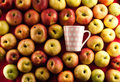 Apple and teacup Royalty Free Stock Image