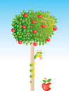 Apple-tree Stock Photo