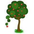Apple tree drawing of an Royalty Free Stock Image