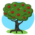Apple Tree Illustration Stock Images