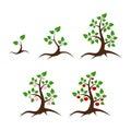 Apple tree vector illustration Royalty Free Stock Photo