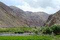 Apple trees at the green valley in Leh, India Royalty Free Stock Photo