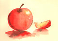 Apple water color illustration Royalty Free Stock Photo