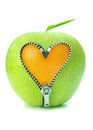 Apple zip Royalty Free Stock Photo