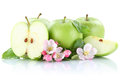 Apples apple fruit fruits slice green isolated on white Royalty Free Stock Photo