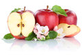 Apples apple red fruit fruits slice half isolated on white Royalty Free Stock Photo
