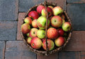 Apples basket of fresh ingrid marie Royalty Free Stock Images