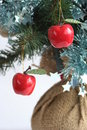 Apples on a christmas tree Stock Photography