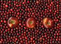 Apples and cranberries Royalty Free Stock Photo