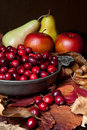 Apples and cranberries Stock Photos