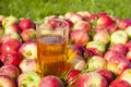 Apples with a glass of juice photos Stock Image