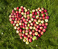 Apples on the ground in the form of heart photos Royalty Free Stock Photography