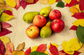 Apples and pears with leaves Royalty Free Stock Photo