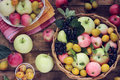 Apples and plums on the table top view table still life chokeberry yellow a wooden Royalty Free Stock Images