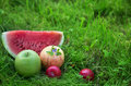 Apples with plums and watermelon slice Stock Photo