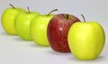 Apples in a row some green and red one Royalty Free Stock Photo