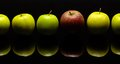Apples in a row some green and red one on dark reflective ground Royalty Free Stock Images