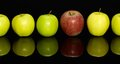 Apples in a row some green and red one on dark reflective ground Royalty Free Stock Photo