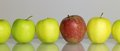 Apples in a row some green and red one on reflective ground Royalty Free Stock Image