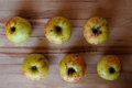Apples six of ripe on a wooden surface close up Stock Images