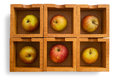 Apples six in six wooden boxes isolated Stock Image