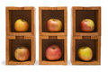 Apples six in six wooden boxes isolated Stock Photography