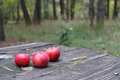 Apples on a table three in autumn wood Stock Photo