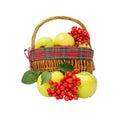Apples and viburnum in basket