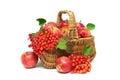 Apples And Viburnum Berries In...