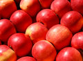 Apples yummy pile of in a market stall Stock Images