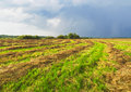 Approaching a thunderstorm mown meadow Royalty Free Stock Image