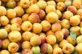 Apricot Royalty Free Stock Photo