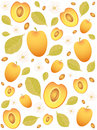 apricot background Royalty Free Stock Photo