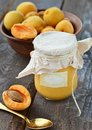 Apricot curd in to the glass jar and ripe apricots Royalty Free Stock Photos