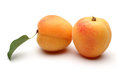 Apricot fruits Royalty Free Stock Photo