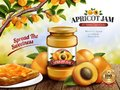 Apricot Jam ads Royalty Free Stock Photo