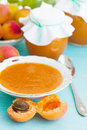 Apricot jam fresh apricots and still life Stock Image