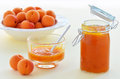 Apricot jam fresh homemade with bowl of whole ripe apricots Royalty Free Stock Photo