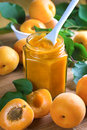 Apricot jam in jar and fresh fruits Royalty Free Stock Photography