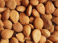 Apricot kernels Stock Photos