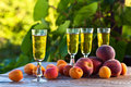 Apricot liquor and fruits on wooden table Stock Photos