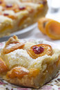 Apricot pie Royalty Free Stock Photos