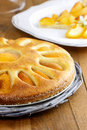 Apricot pie selective focus festive dessert Royalty Free Stock Photos