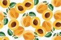 Apricot seamless pateern on white