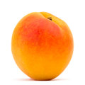 Apricot on white background Stock Photo