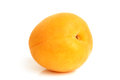 Apricot on a white background Royalty Free Stock Photo