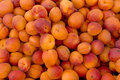 Apricots background of ripe orange organic Royalty Free Stock Photo