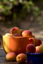Apricots in ceramic bowls beautiful ripe on a soft background Royalty Free Stock Photography